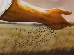Precious seed
