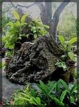 stone-2b