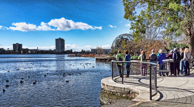 Bird walk Lake Merritt. Photo by Heidi Rand