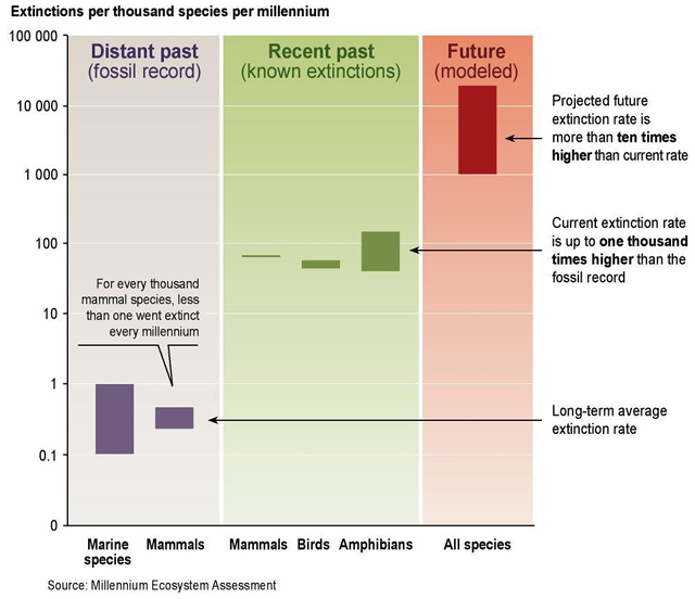 "Graph ""Species extinction rates"" by GRID Arendal"