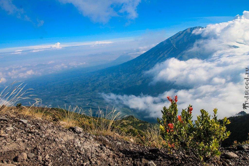 вулкан мерапи фото