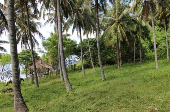 Lombok-Land4