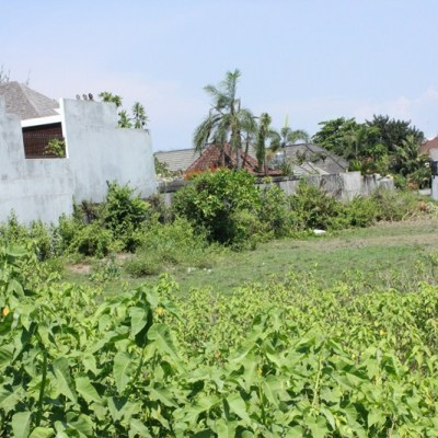 Canggu Land for sale !