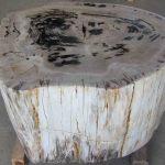 Petrified Wood Tables For Sale Indogemstone Petrified Wood