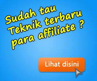 Download AffiMarket Theme