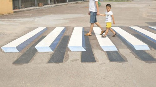 3d zebra cross