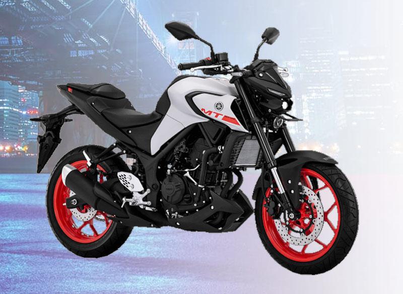 Yamaha MT-25 Warna Matte Grey