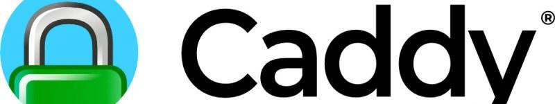 Installare e configurare Caddy (reverse proxy) con Docker su Raspberry Pi OS