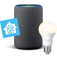 Integrare gratuitamente Amazon Echo (Alexa) con Home Assistant (via haaska e AWS)