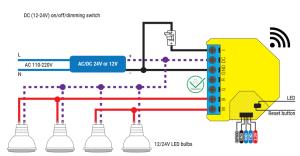 Shelly RGBW2 - schema di connessione - DC White LED bulbs
