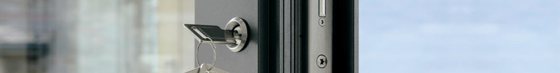 Security: opening control via gates Sonoff  RF  Bridge  e  Appthe HomeKits (via Homebridge)