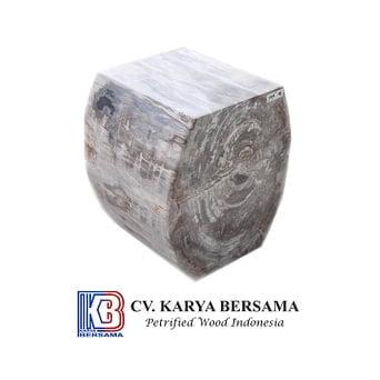 Indonesia Petrified Wood 9