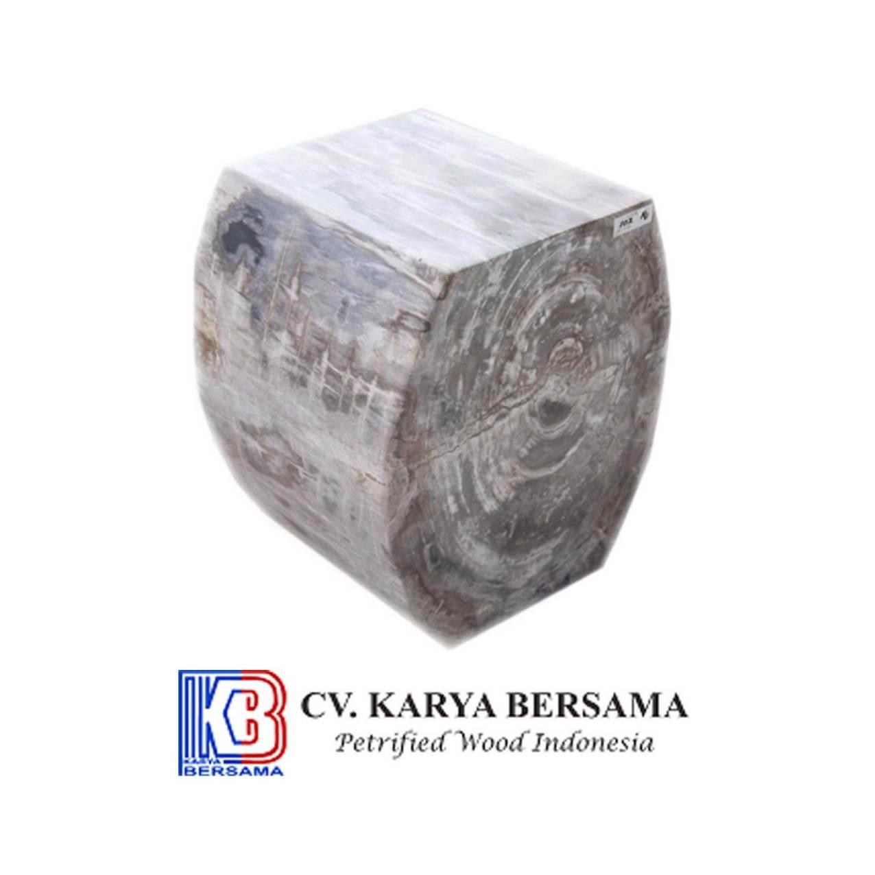Petrified Wood Occasional