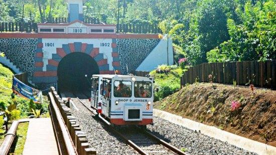 10-1-Lori-Wisata---Terowongan-by-antarafoto2