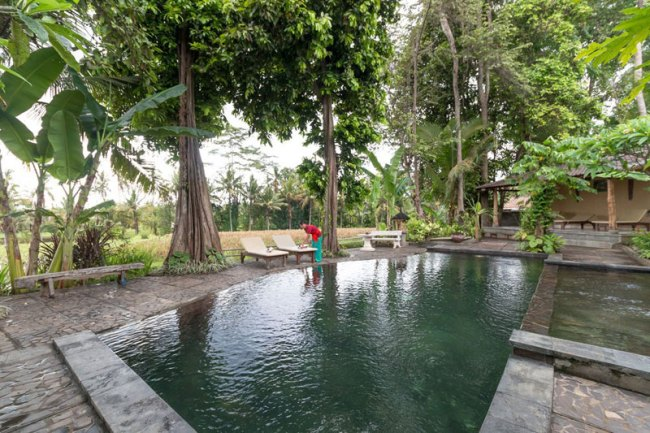 5-4-outdoor-pool-with-rice-paddy-view