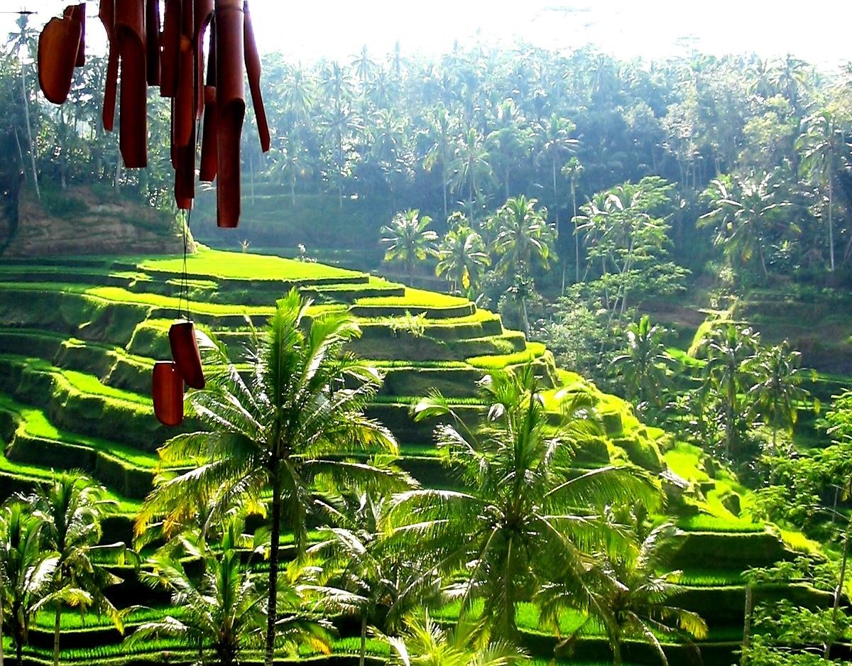 Bali viaggiare nell'isola splendente