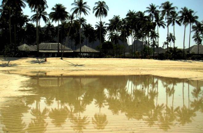 thailandia bassa marea a phi phi