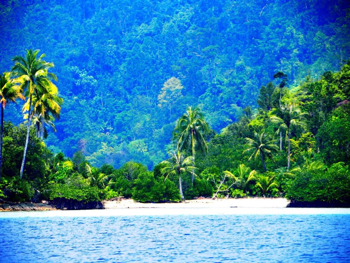 Sumatra giungla e mare