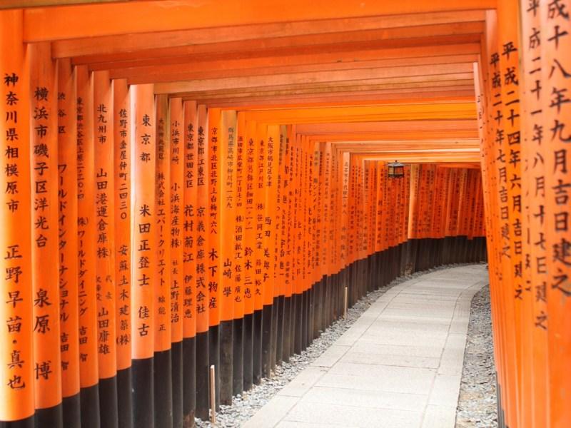 Giappone tori a Fushimi Inari