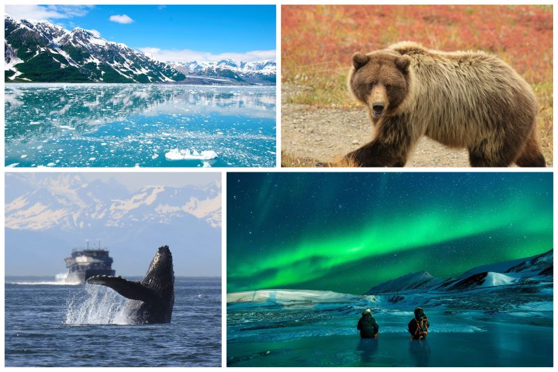 Nord Ovest Alaska