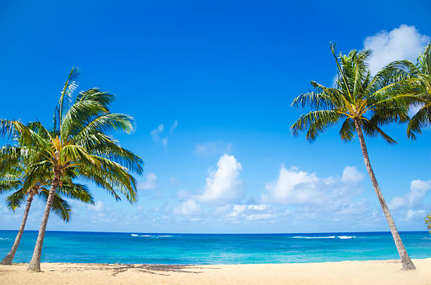 Kauai Hawaii Poipu Beach