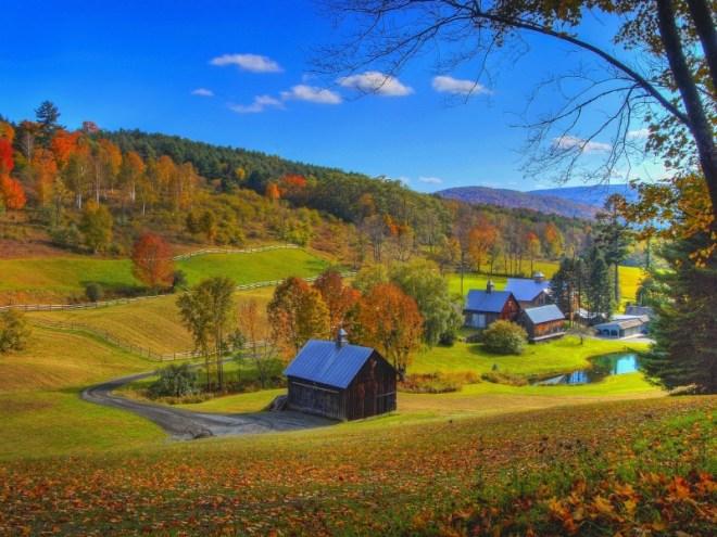 Foliage-Vermont