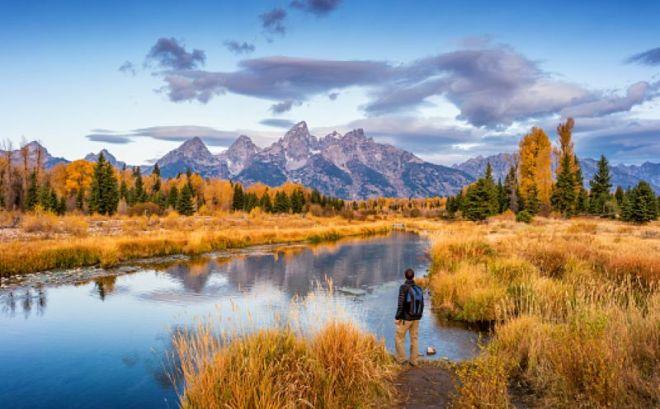 foliage-Wyoming