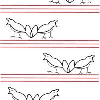 Maleo Birds - The new symbol of love