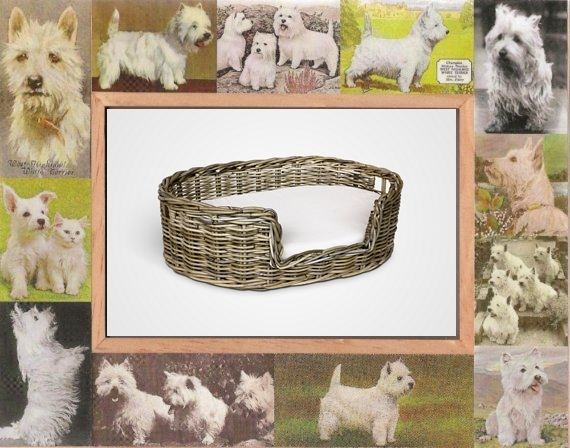 Friendly Natural Rattan Furniture for Your Pet