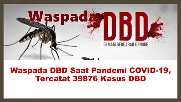 Waspada DBD Saat Pandemi COVID-19, Tercatat 39876 Kasus DBD