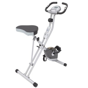 Exerpeutic Folding Magnetic Upright Bike and Pulse