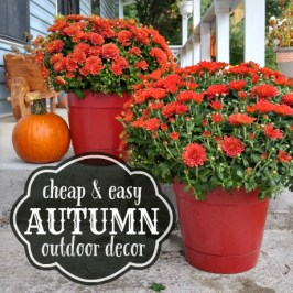 Cheap and easy Autumn outdoor decorating