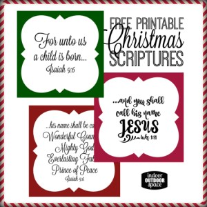 Christmas Scripture Tags