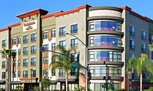 burbank-motels-mold-inspection