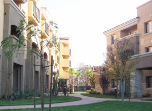 bell-gardens-apartments-mold-growth-inspection