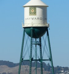 hayward-water-tower-mold-growth-inspection-testing