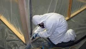 artesia-sealed-mold-remediation-process