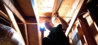 mold-inspection-in-richmond-attic