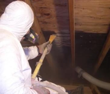 mold-removal-contractors-applying-sealant
