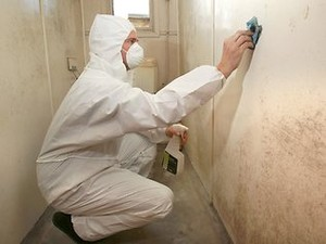 man-using-bleach-for-mold-removal