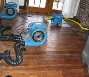 water-damage-mold-removal-clean-up