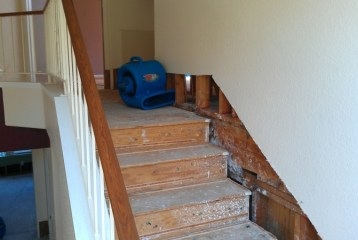 water-damage-mold-restoration-mold-removal