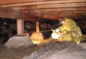 mold-removal-biocide-application