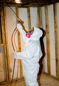 mold removal process of encapsulation