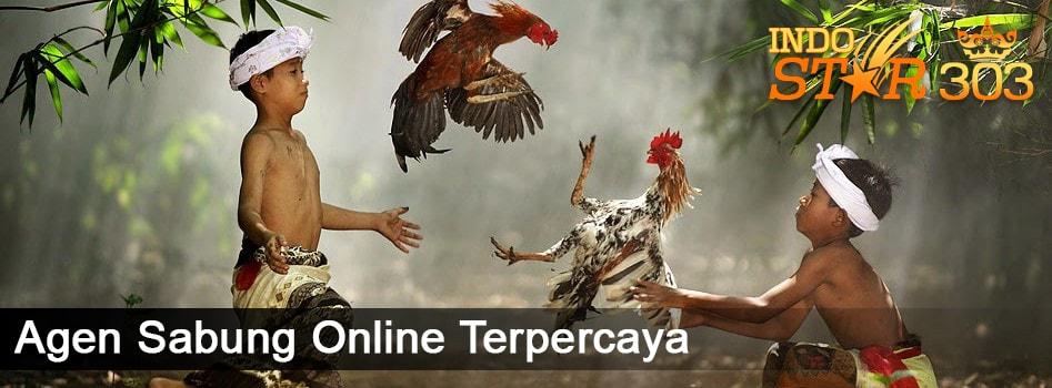 Agen Sabung Online - Definisi Meron dan Wala