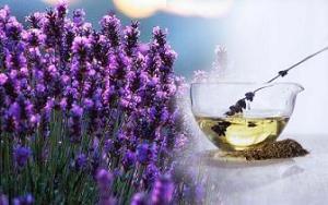 Manfaat Minyak Lavender