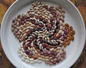Makan Lebih Banyak Kacang