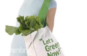 Membantu Lingkungan di Tahun Ini