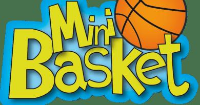 Mini-Basket