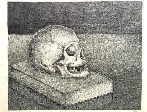 Skully by Briann Baker (2013)